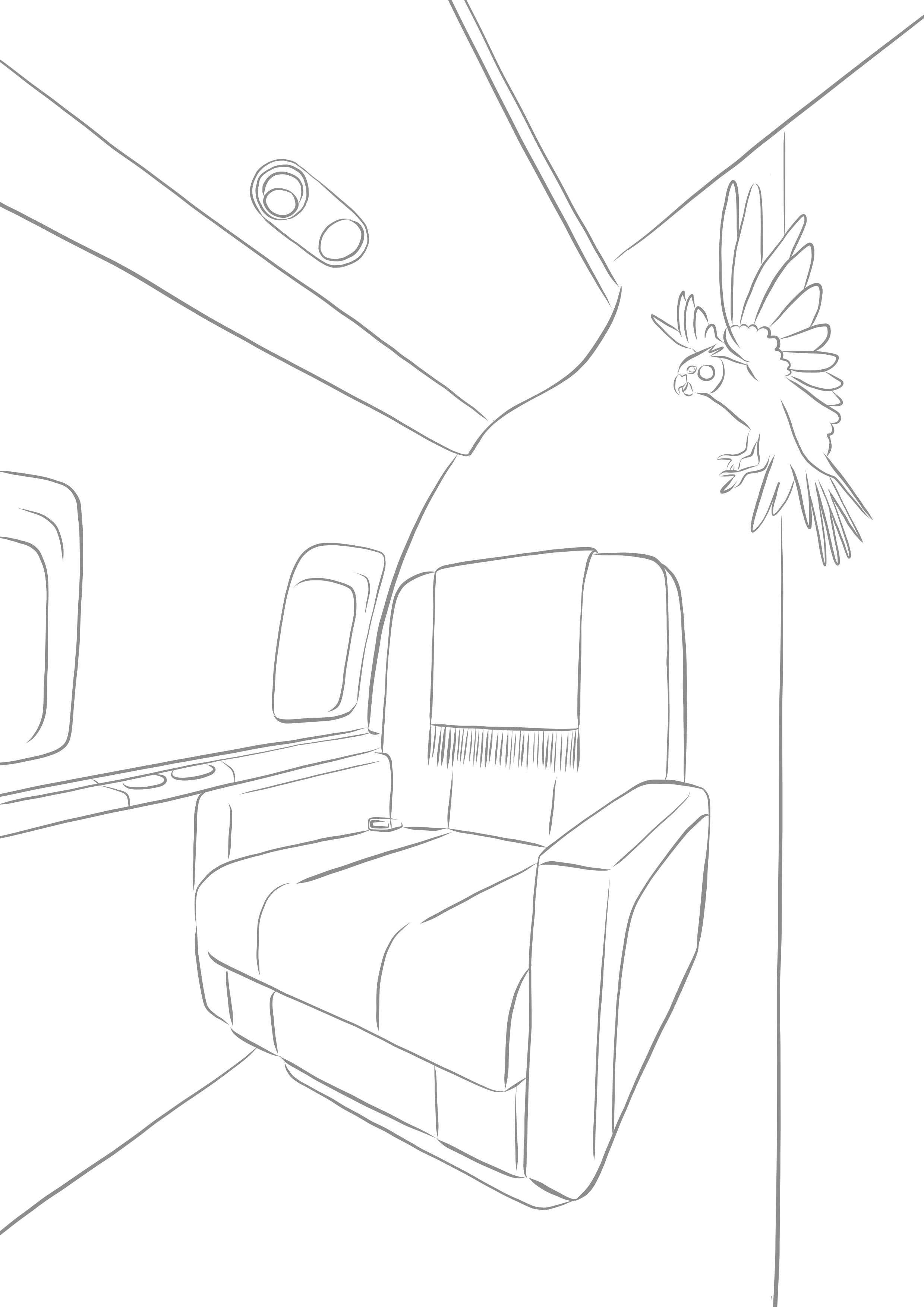 Color-in-VistaJet-Cabin.jpg