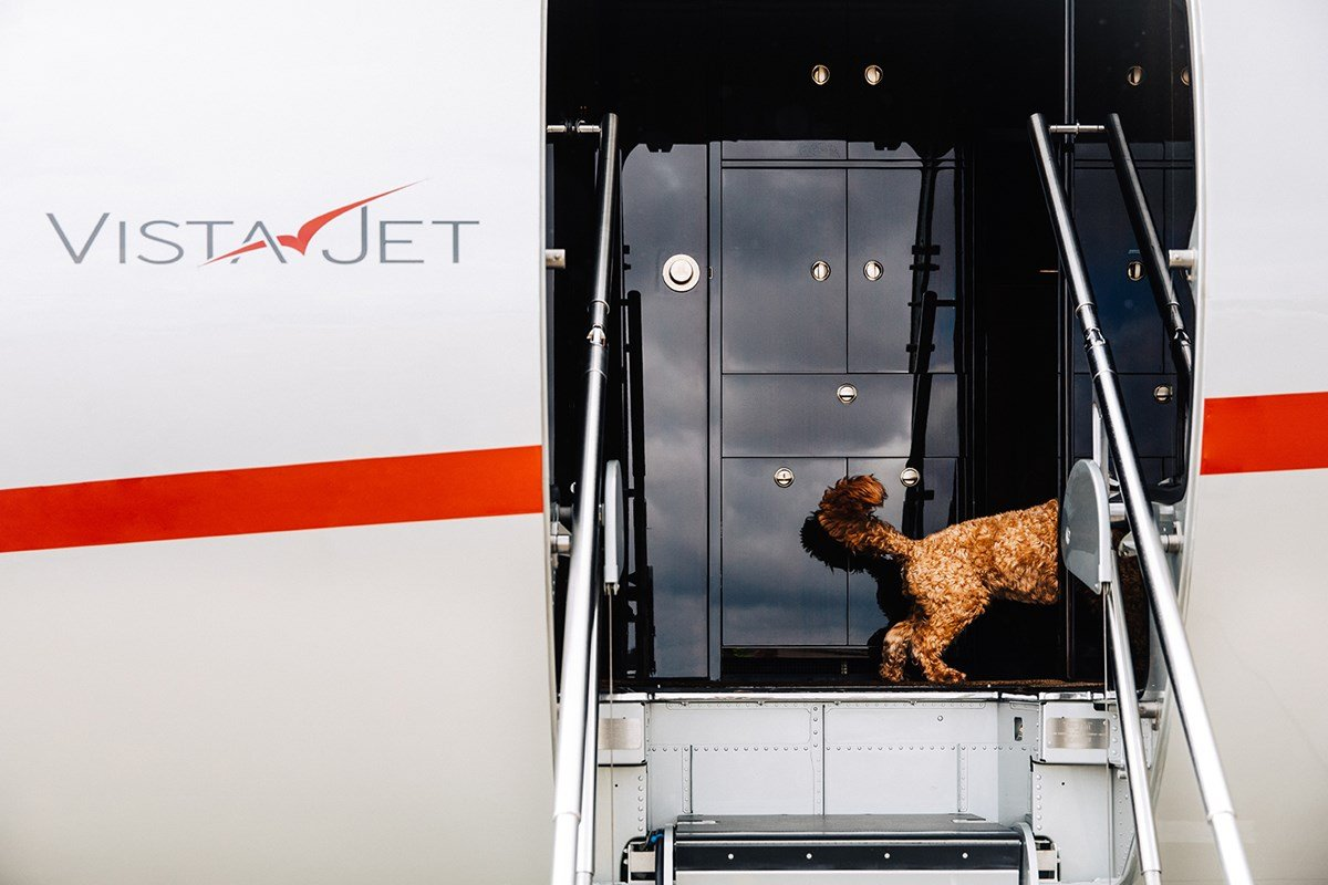 VistaJet launches global pet travel program